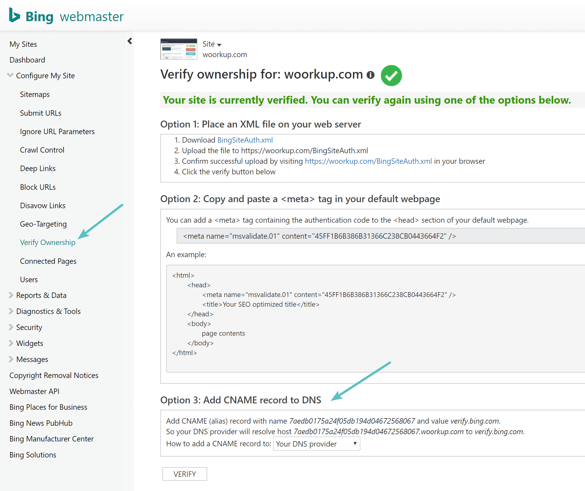 Bing Webmaster Tools verification options