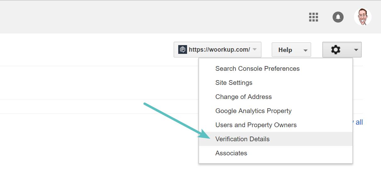 Google Search Console verification details