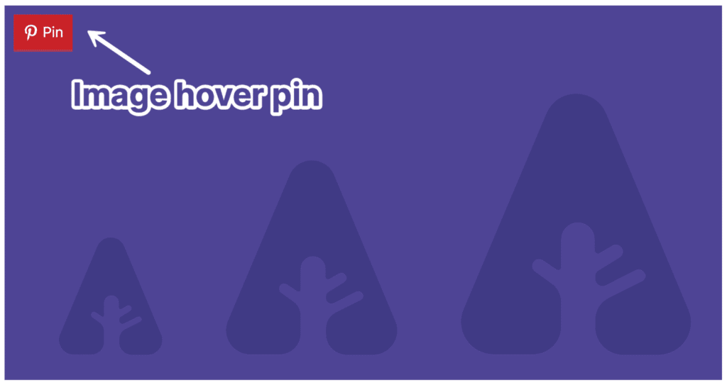 Pinterest image hover pins in Novashare
