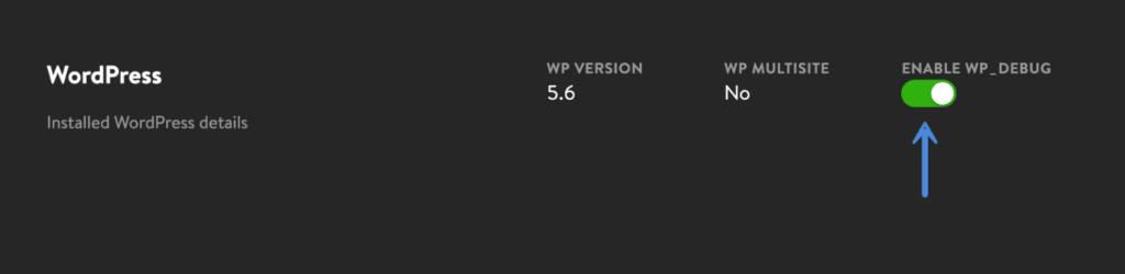 Enable WP_DEBUG in DevKinsta